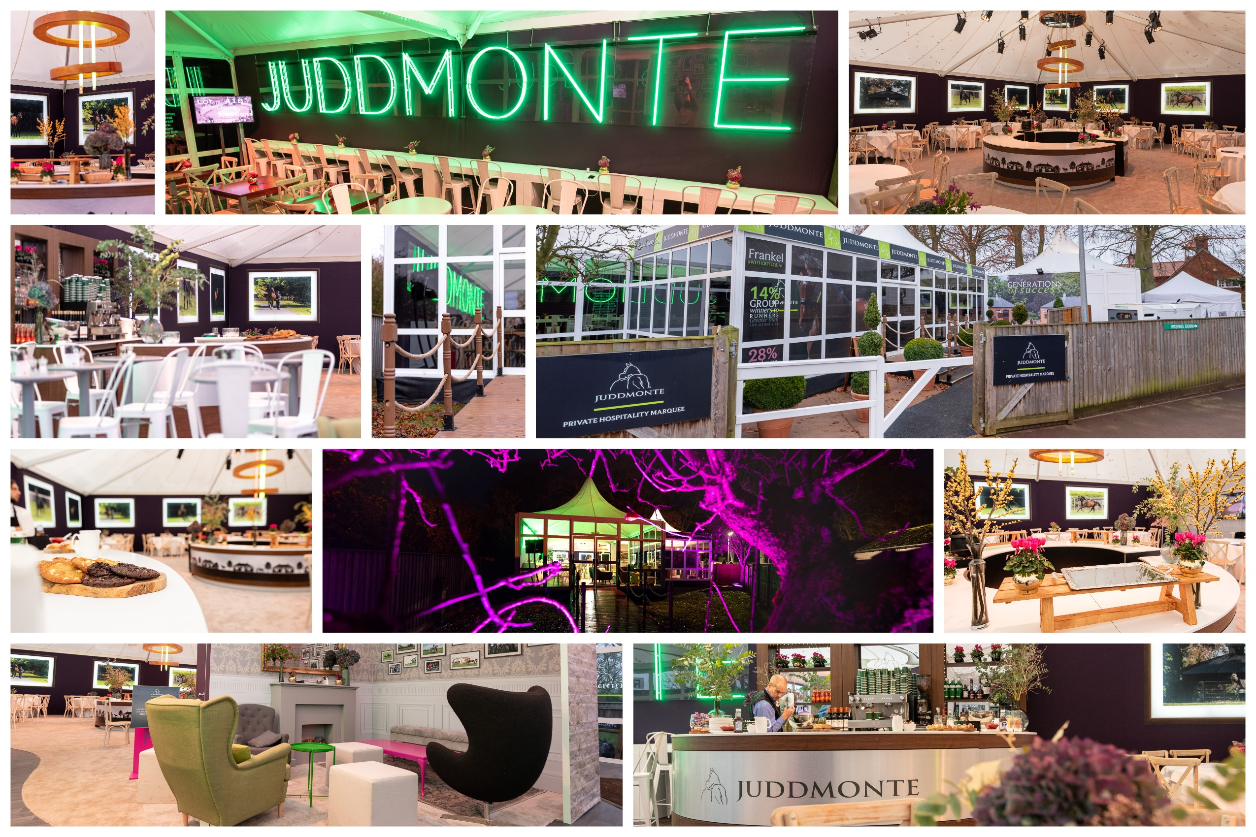 juddmonte jpg - Create the spectacular...that's what we do!